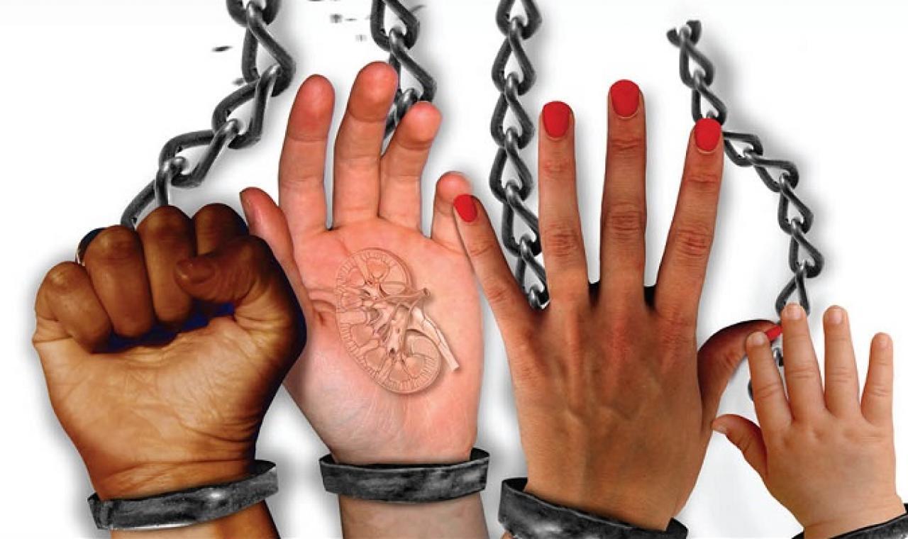 Justiça registra 340 casos relacionados a tráfico de pessoas no ano